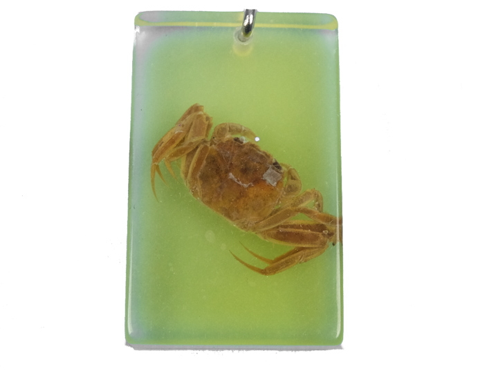 Glow-in-the-Dark Bug Keychain: Crab
