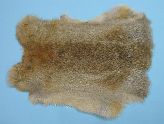 Better Rabbit Skin: Mixed Natural Colors