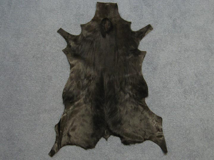Dyed Springbok Skin: #1: Brown