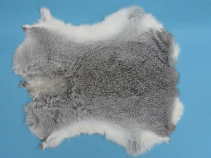 Craft Rabbit Skin: Chinchilla