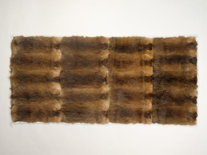Muskrat Plate: Back: Natural Brown