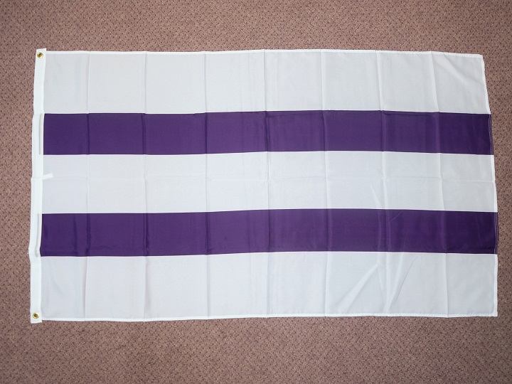 Two Row Wampum Flag: 36 x 60""