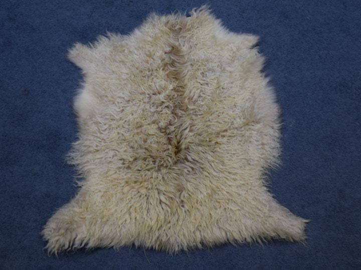 Angora Goatskin: #1: Multi-Color - 66-A1S-MC-AS