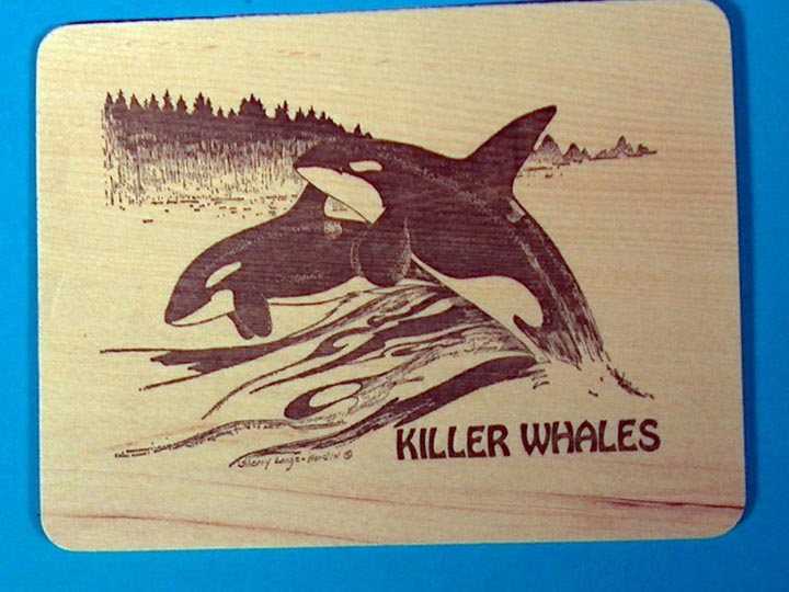 Killer Whales Wooden Postcard