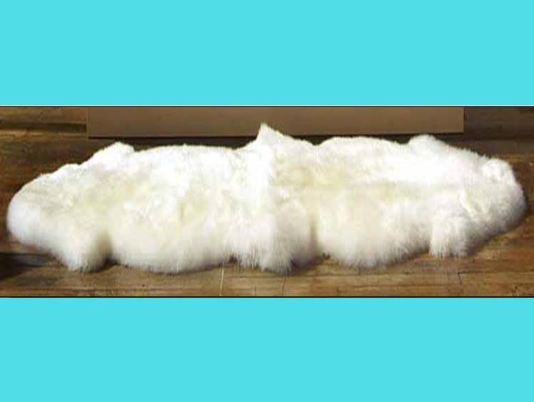 "Australian Sheepskin Double Rug: ~71"" x 25"": Ivory (Natural White)"