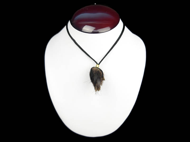 Real Hair-On Black Bear 1-Claw Necklace: Gallery Item