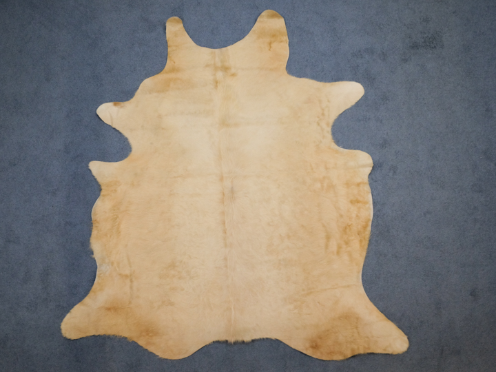 Cow Hide: Medium: Gallery Item