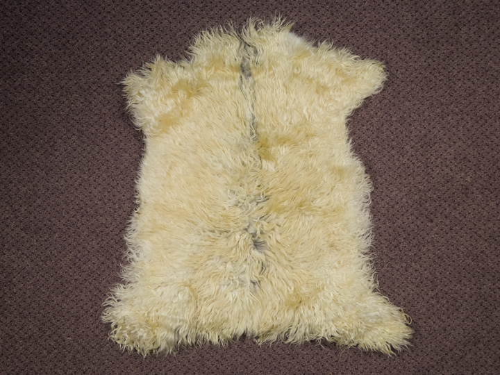Angora Goatskin: #1: Medium: Multi-Color: Gallery Item