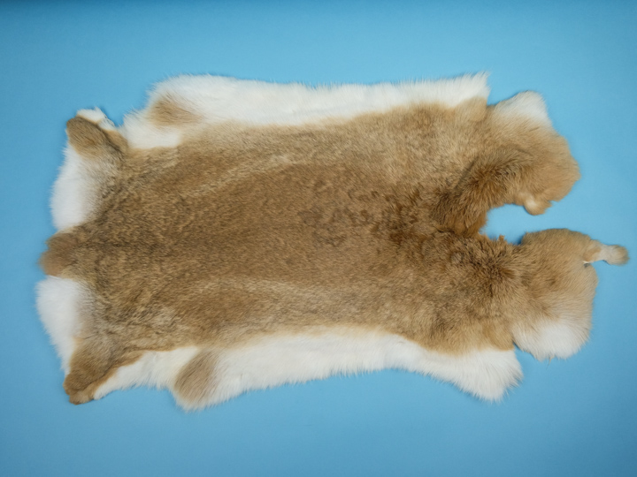 Chichesters Best Collection: Bunny Brown Czech Rabbit Skin: Gallery Item