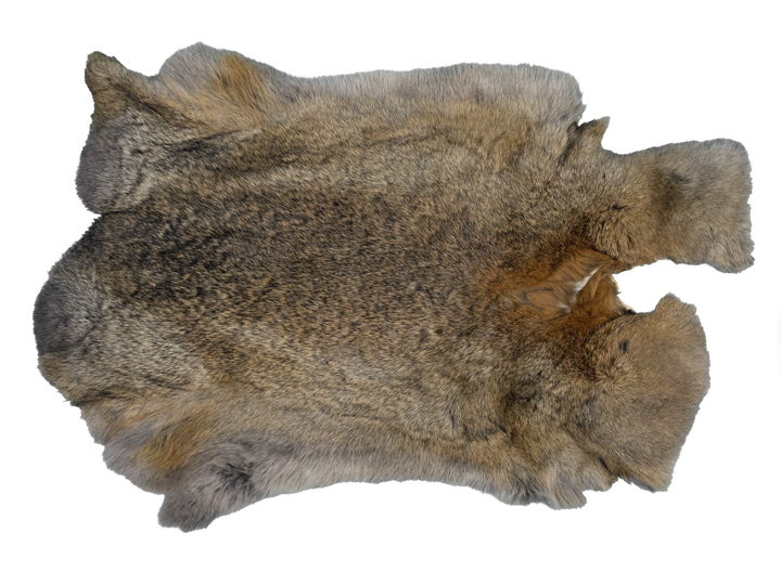 Chichesters Best Collection: Bunny Gray Czech Rabbit Skin: Gallery Item