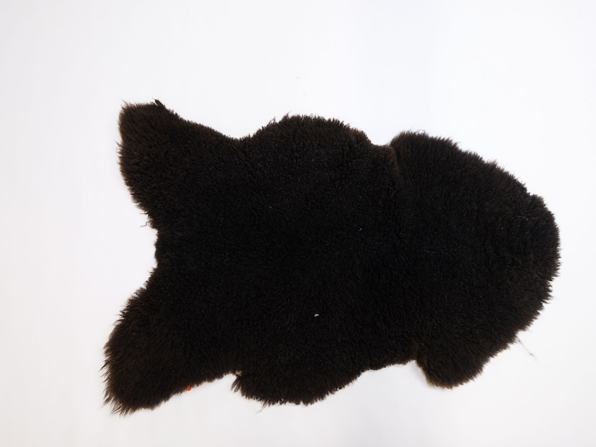 Natural Curly Swedish Sheepskin: 110-120cm: Gallery Item