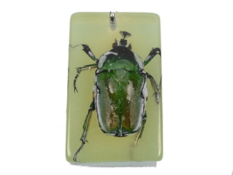 Glow-in-the-Dark Bug Keychain: Green Beetle