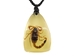 Glow-in-the-Dark Bug Necklace: Scorpion - 1010-NL-201G (A7)
