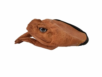 Cane Toad Coin Pouch: Large: Natural Brown