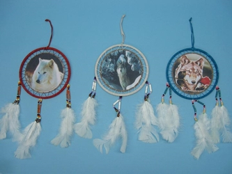 "Dreamcatcher with Image: 6.5"": Assorted Designs"
