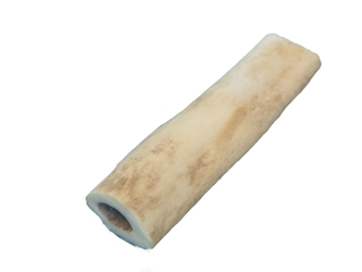 "2.0"" Coyote Bone Hairpipe bone beads"