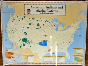 American Indian & Alaskan Natives Map