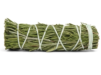 "4""-5"" Rosemary Bundle"