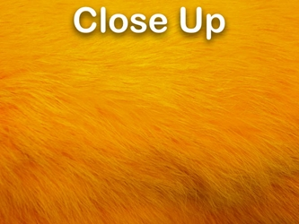 Dyed Better Rabbit Skin: Fluorescent Orange