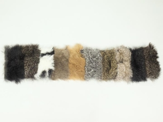 Rabbit Swatch Color Chart