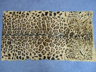 Long Hair Printed #1 Rabbit Plate: Leopard Pattern