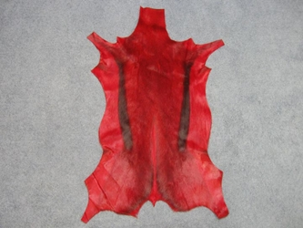 Dyed Springbok: Select Grade: Deep Red