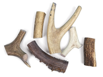 Tumbled Deer Antler Scrap (lb)