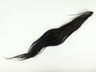 Dried Horse Tail: Black with Red