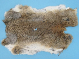 Cut-Up Rabbit Skin: Mixed Natural Colors