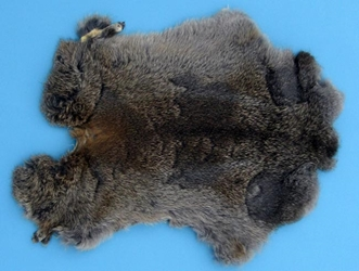 Gift Shop Rabbit Skin: Mixed Natural Colors