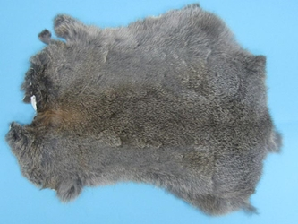 Gift Shop Rabbit Skin: Bunny Gray