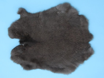 Gift Shop Rabbit Skin: Clear Black