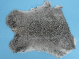 "Gift Shop Rabbit Skin: ""Chinchilla"""