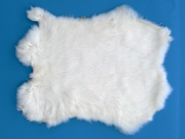 Gift Shop Rabbit Skin: White
