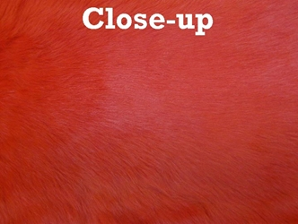 Dyed Trading Post Rabbit Skin: Red