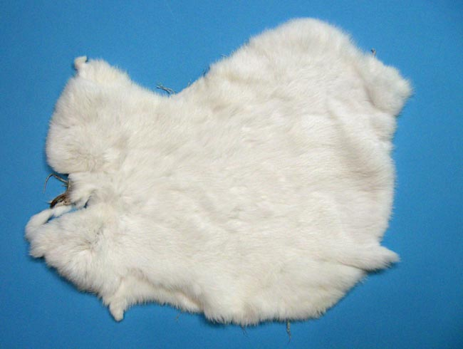 Trading Post Grade Rabbit Skin: White