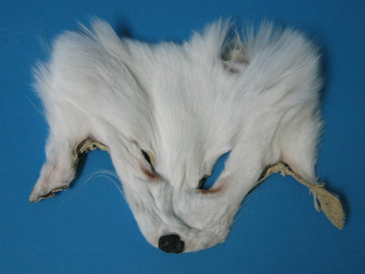 White Shadow Fox Face