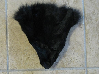 Coyote Face: Black Dyed: #1/2