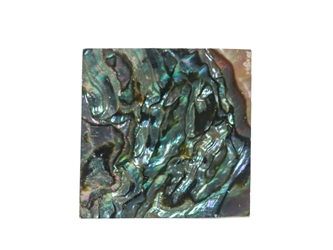 Mexican Abalone Shell Shape: 20x20x1mm
