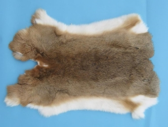 Czech #1/#2 Breeder Rabbit Skin: Bunny Brown