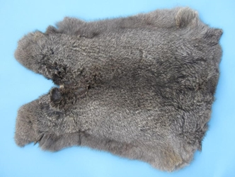 Czech #1/#2 Breeder Rabbit Skin: Bunny Gray