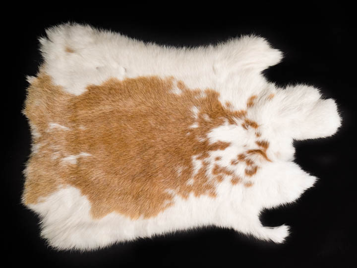 190721-D One Average Natural Rabbit Fur White and Black Spotted Rabbit Hide No