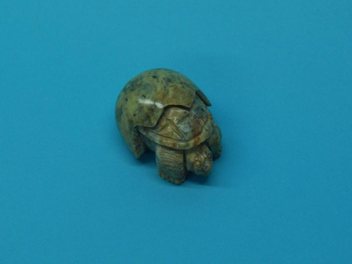 Iroquois Turtle Hatchling
