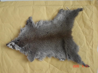 Chinese Gray Squirrel Skin