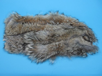 Premium Coyote Fur Scrap: Large (lb)