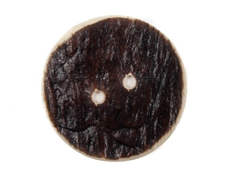 Palm-Cut 2-Hole Moose Antler Button: 2.0""