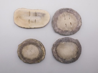 Cross-Cut Blind-Hole Moose Antler Button: 2.0-2.5""