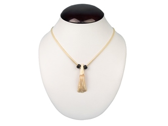 Real Water Buffalo Tooth Necklace: 1-Tooth