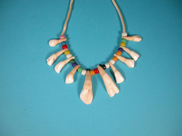 Real Water Buffalo Tooth Necklace: 10-Tooth