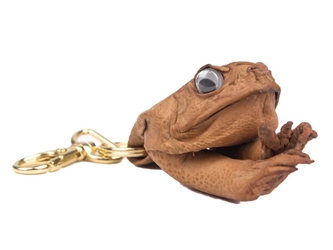 Cane Toad Key Holder with Clip